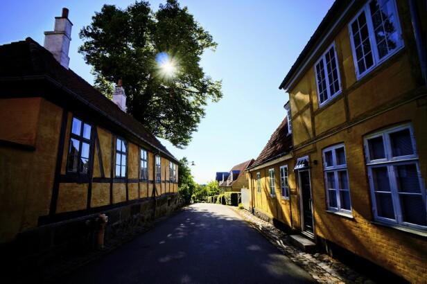 FOTO: Julia Karla, Lotta Hansson og PR