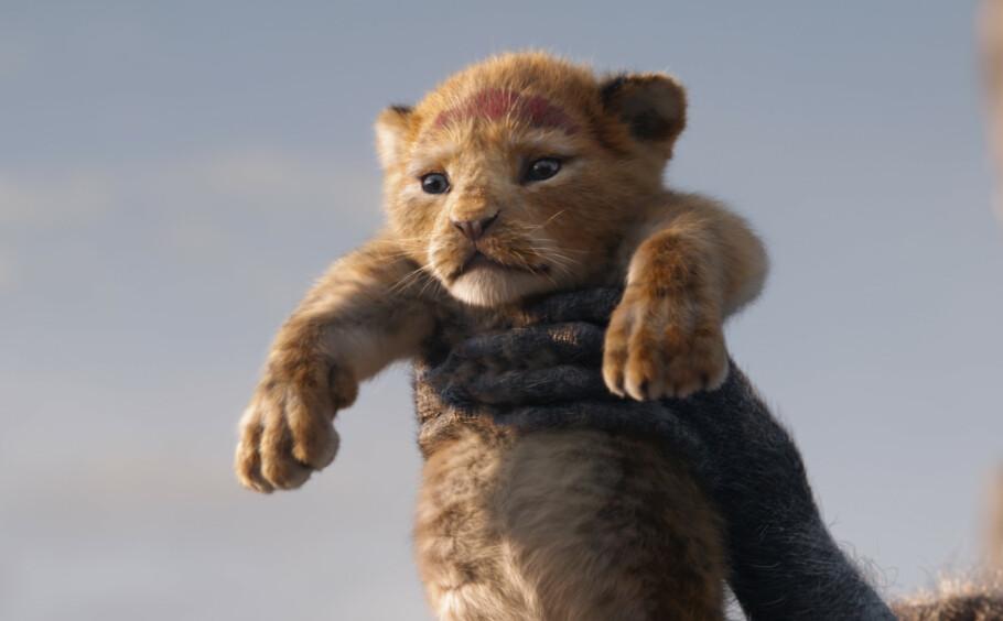 NYVERSJON: Sommeren 2019 kom nyversjonen av 90-tallsklassikeren «Løvenes konge» på kino. FOTO: Disney Enterprises