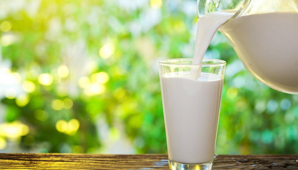 DRIKK MELK: Melk er gjerne en lett tilgjengelig kilde til proteiner av god kvalitet.