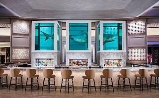 Verdens dyreste hotellrom koster 890 000 per natt