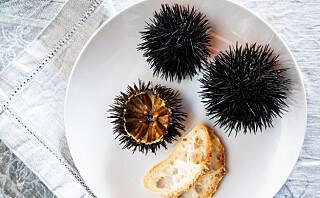 5 gode grunner til å spise kråkeboller