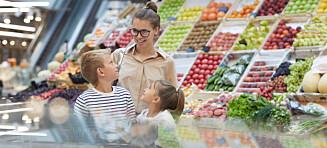 Småbarn eller tenåring: Når er de dyrest i drift?