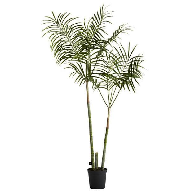 Fyll stua med grønne planter! Har du ikke gartnergener, gå for eviggrønne, naturtro varianter (kr 2500, Lene Bjerre). FOTO: Produsenten