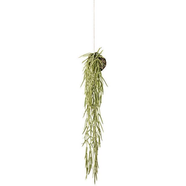 Planter! Overalt! Også på badet. En hengende, kunstig sukkulent tilfører den organiske følelsen (kr 900, Lene Bjerre). FOTO: Produsenten