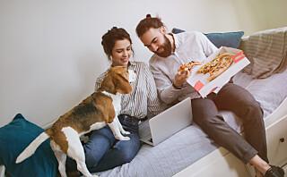 Har hunden godt av å spise dine matrester?