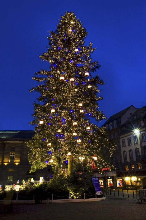 Selve symbolet på Strasbourg som julehovedstad står på Place Kléber i hjertet av Grand Île. Det 28 meter høye treet er Frankrikes høyeste juletre. FOTO: NTBScanpix