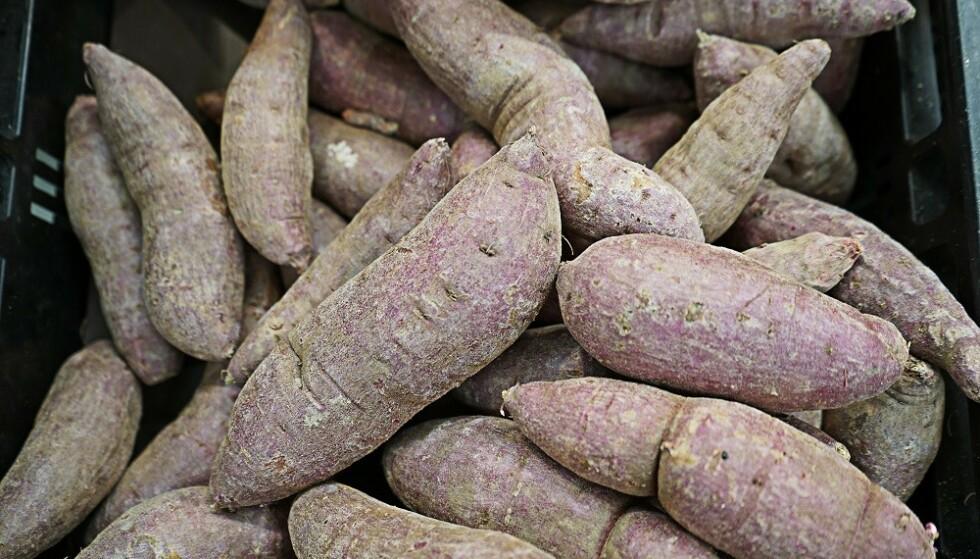 IMPORT: Potet og søtpotet dyrkes ofte i Norge, men yams må importeres. FOTO: Scanpix