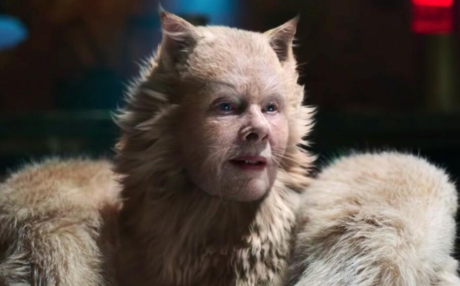 KATTEKVINNEN: Slik ser Judi Dench ut som en av sjefskattene, Old Deuteronomy, i filmversjonen av musikalen Cats. FOTO: Universal