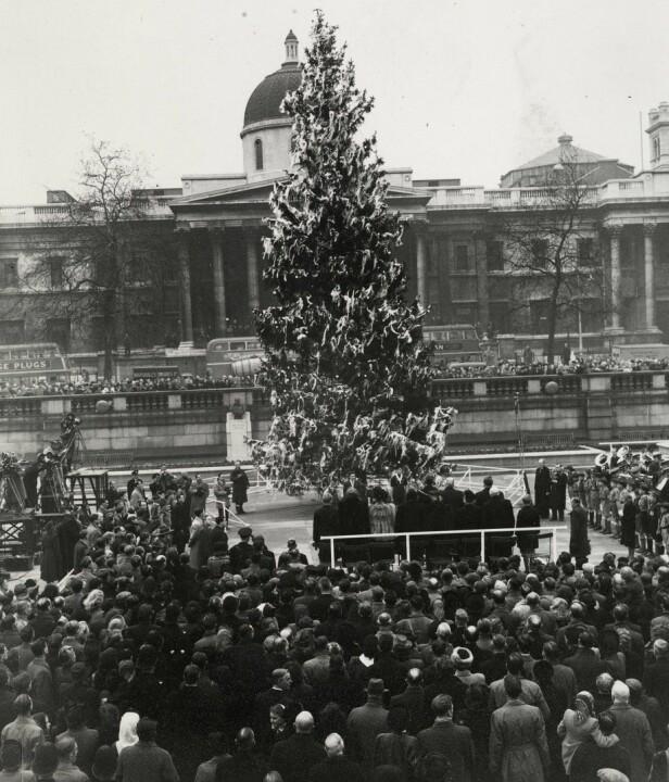 TRADISJON: Dette bildet er tatt rundt 1950, og viser det norske grantreet på Trafalgar Square i London. FOTO: Oslo Museum