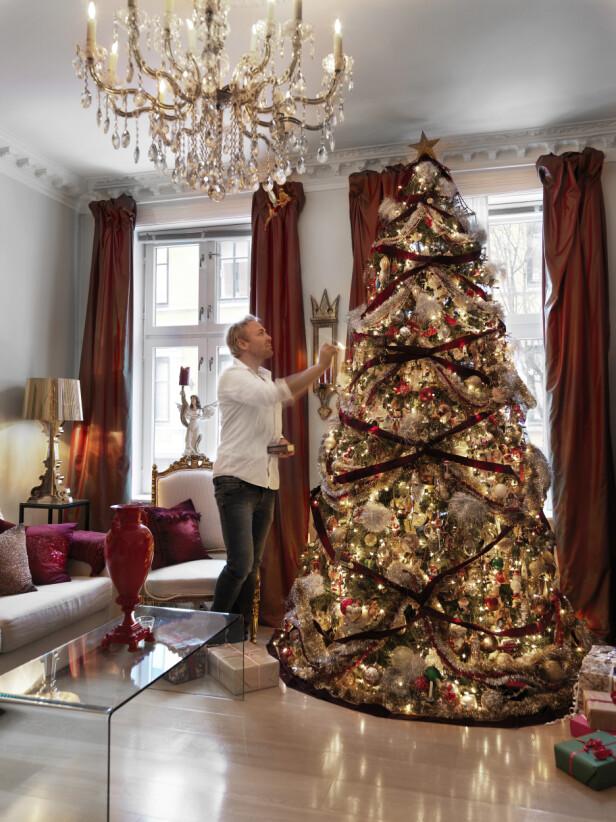 DU GRØNNE, GLITRENDE: - Treet er enda vakrere i virkeligheten, påpeker Sigurd Storm. Her fra leiligheten i fjor. FOTO: Mona Gundersen