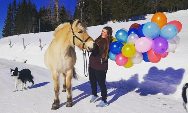 BESTEVENN: Fjordingen Tord er hesten til Marit. Han har hun hatt i snart 16 år. En ekte venn som har vært tilstede gjennom mobbing på barne- og ungdomsskolen. FOTO: Privat