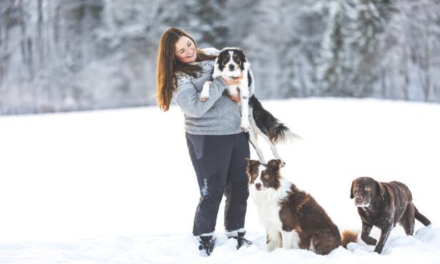 «MENNESKETS BESTE VENN»: Her med labradoren Alma og border collienene Full Gass og Keen Kiter. FOTO: Stineogjarlen.com