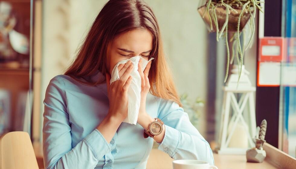 ALLERGISK: Får du en vårforkjølelse hvert eneste år? Det kan hende det faktisk er pollenallergi. Foto: Scanpix.