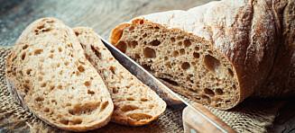 «Brød gjør deg tykk» - eller?