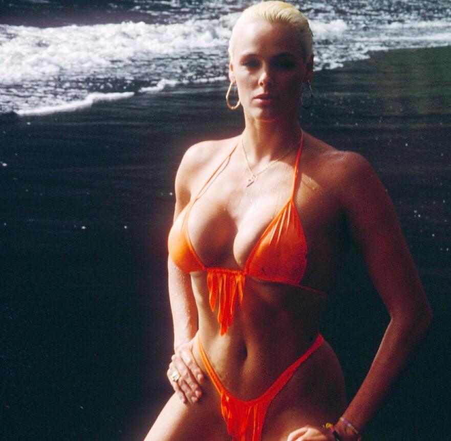 GAMMEL DANSK: Brigitte Nielsen hadde stor suksess på 80-tallet, og har siden vært åpen om sine opp- og nedturer. Begge deler har det vært mye av. FOTO: NTB Scanpix