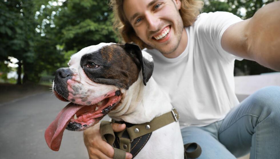 FREMSTÅR POSITIVT: Mange vil, helt automatisk og ubevisst, tolke mye positivt fra et bilde av en person som poserer med en søt hund, såfremt man liker hunder. FOTO: NTB Scanpix
