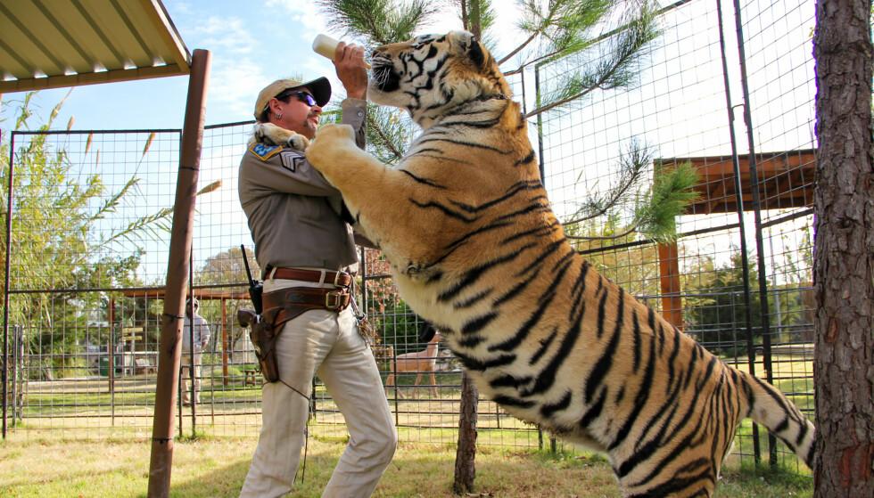 LILLEKATTEPUS: En av tigrene får flaske av matfar. I «Tiger King» kommer det frem at nærkontakten med tigrene ikke alltid har heldig utfall. FOTO: Netflix.