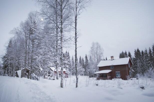 Andrea bor i dette lille huset i skogen. FOTO: Privat