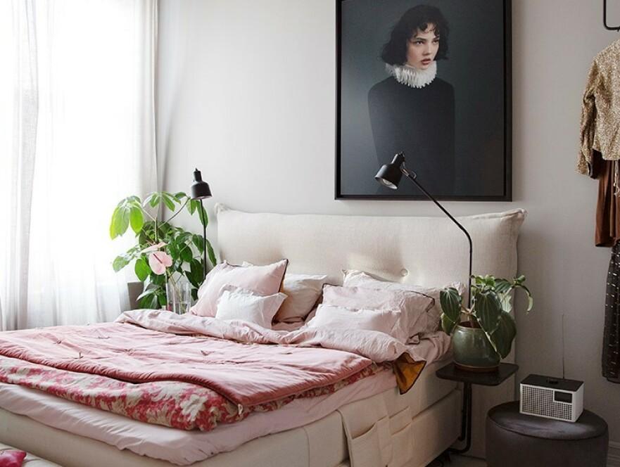 EN ROSA DRØM: Interiøstylist Tone Kroken tror vi trenger farger i hjemmet, særlig i disse dager og tipser om hvilke farger som fungere i hvilke rom. Foto: Annette Nordstrøm