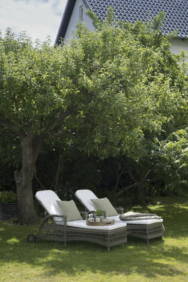 Den frodige og grønne hagen er den perfekte rammen rundt det hvite, romantiske huset. FOTO: Stine Christiansen