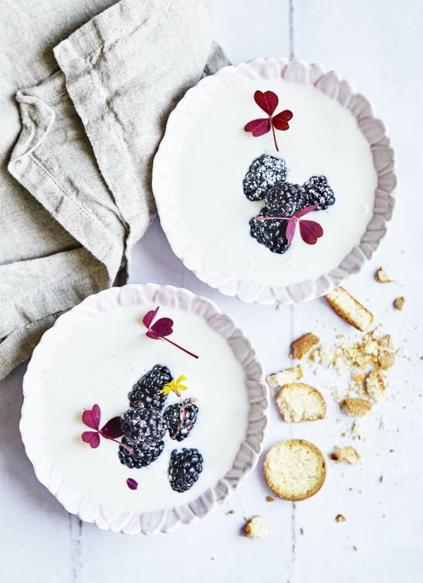 Koldskål er en tradisjonell dansk dessertsuppe. Danskene serverer den gjerne med noen småkaker som de kaller kammerjunkere. FOTO: Betina Hastoft