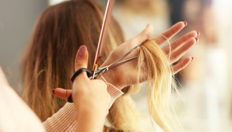 ENDELIG! Du skal berre klippe tuppane, men innser at det blir kort bob fordi halve håret er slitt. Då er det fint å skylde på korona. FOTO: NTB Scanpix