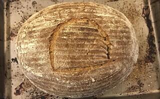Baker brød med 4500 år gammel surdeig