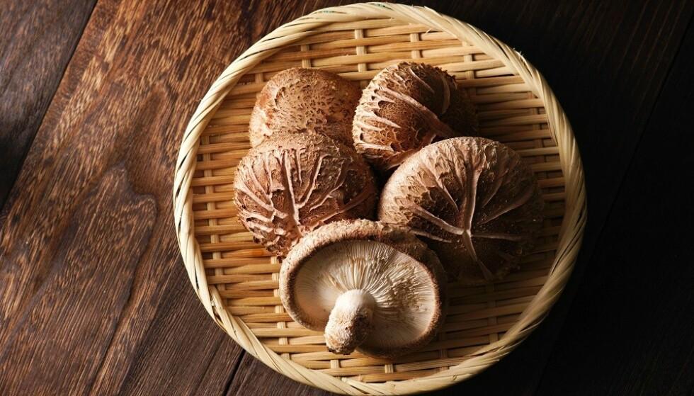 SHIITAKESOPP: Denne soppen er én av mange matvarer som bidrar med smaken av umami. FOTO: NTB Scanpix