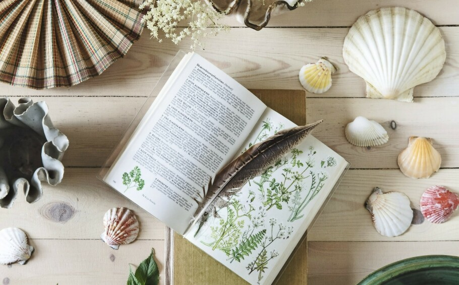INTERIØR: Innred med botaniske motiver, skjell og fine loppefunn hvis du vil skape samme stemning som i Ann-Lies sommerhus. FOTO: Christina Kayser O.