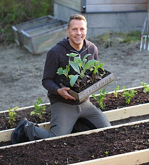 IKKE PLANT UT FOR TIDLIG: Husk å ta hensyn til nattetemperaturen før du planter ut, råder Kenneth Ingebretsen. FOTO: Garden Living