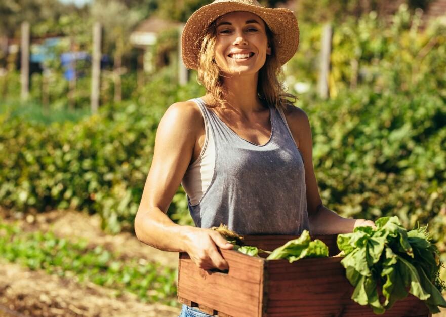 KJØKKENHAGE: Å dyrke sine egne grønnsaker er både bra for planeten og for lommeboka, men unngå disse fallgruvene. FOTO: NTB Scanpix