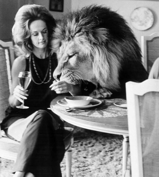 IKKE FØR JEG HAR SAGT VÆRSÅGOD!: Tippi Hedren og Neil spiser middag sammen. FOTO: NTB Scanpix