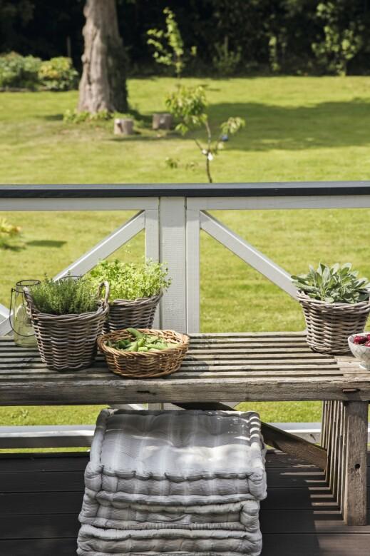 En benk gjør det lett å få plass til ekstra gjester, og du kan også plassere potteplanter oppå den for å skape små stilleben i flere nivåer.