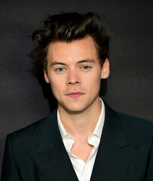<strong>PEN I TØYET:</strong> Harry Styles skal ha hatt på seg dress den natten han gjorde sine hoser grønne hos Lindsay Lohan. Hvert fall ifølge Lohan. FOTO: NTBScanpix