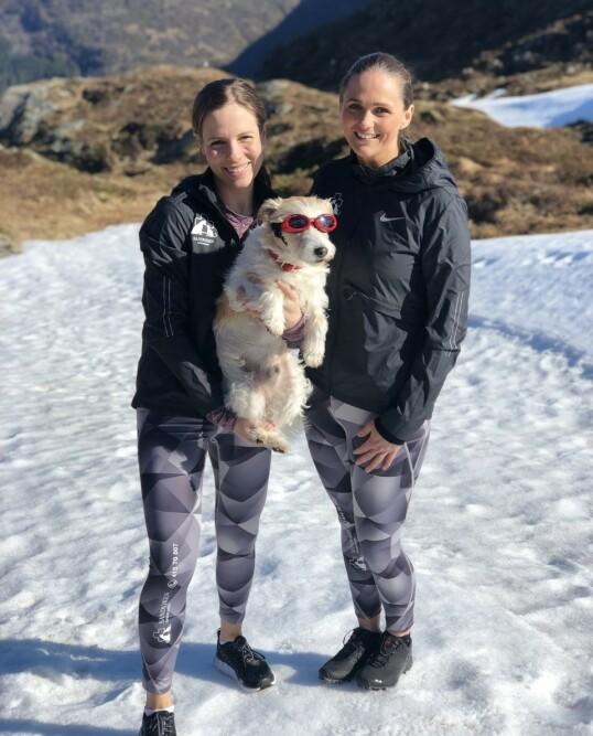 SOLBRILLER I FJELLET OG PÅ SJØEN: Veterinæren anbefaler spesielle hunde-solbriller, såkalte som «Doggles», som sitter godt og dekker øynene helt. FOTO: Privat