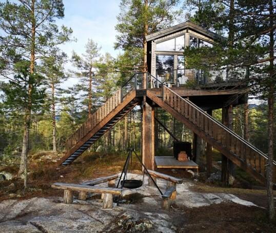 10 av Norges kuleste tretopphytter