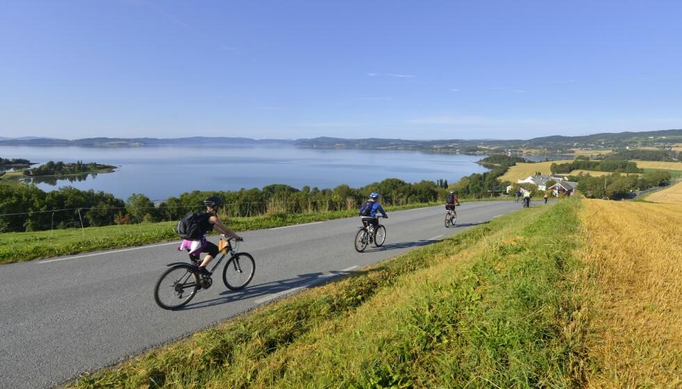 TRONDHEIMSFJORDEN: «Den Gyldne Omvei» er en serie opplevelser på Inderøy. FOTO: Gjermun Glesnes