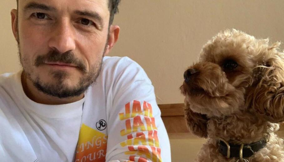 <strong>ORLANDO BLOOM:</strong> Den britiske skuespilleren fant hunden Mighty død etter stor leteaksjon. FOTO: Instagram