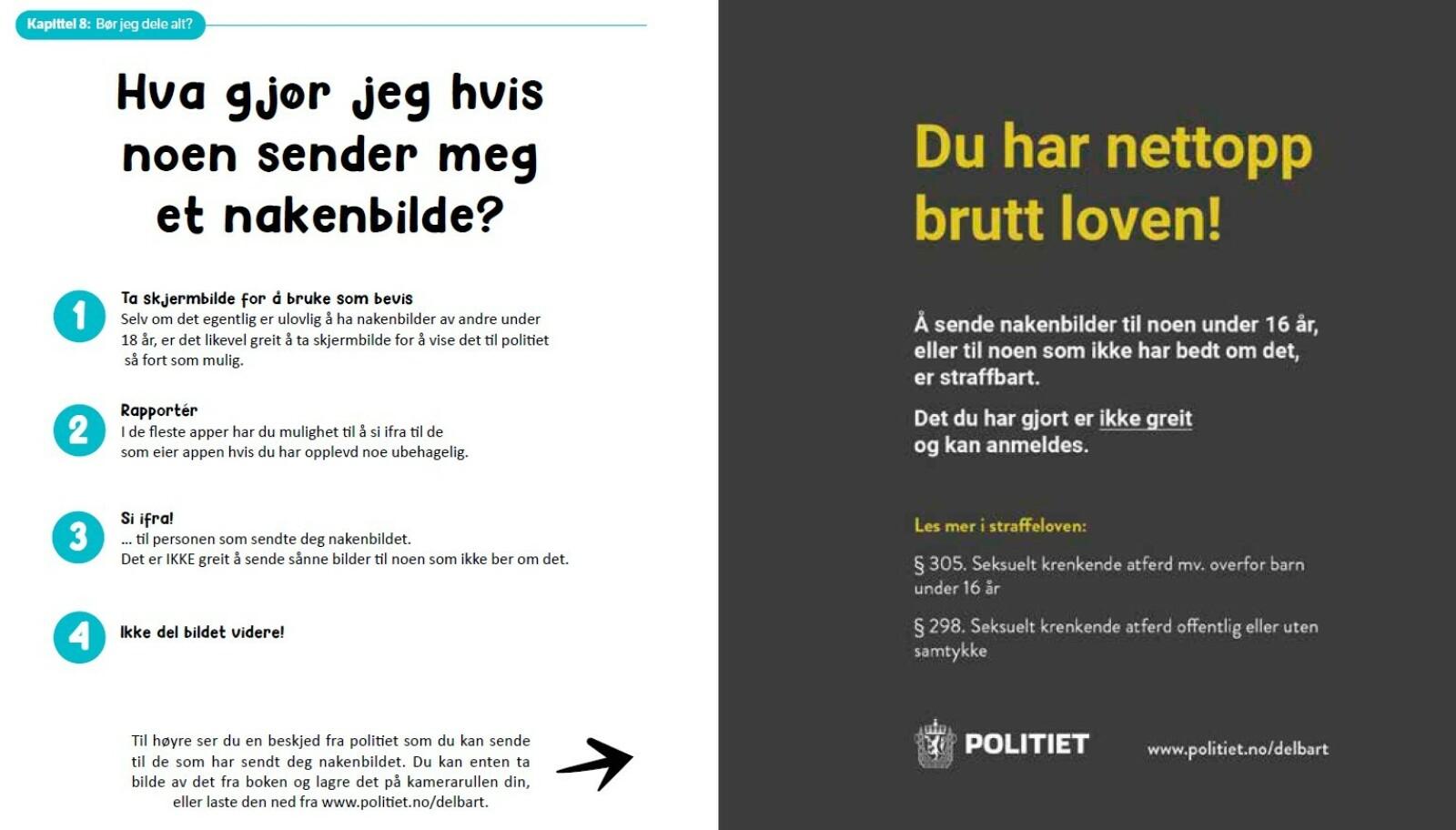 NETTVETT OM NAKENBILDER: Denne siden er hentet fra NETTVETT-boken skrevet av Johannes Slettedal. ILLUSTRASJON: Nettvett// Gyldendal // Martin Aas