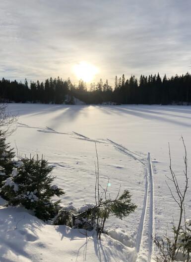 LYKKE: Ingenting er som en skikkelig god langrennstur i naturskjønne omgivelser. FOTO: Malini Gaare Bjørnstad