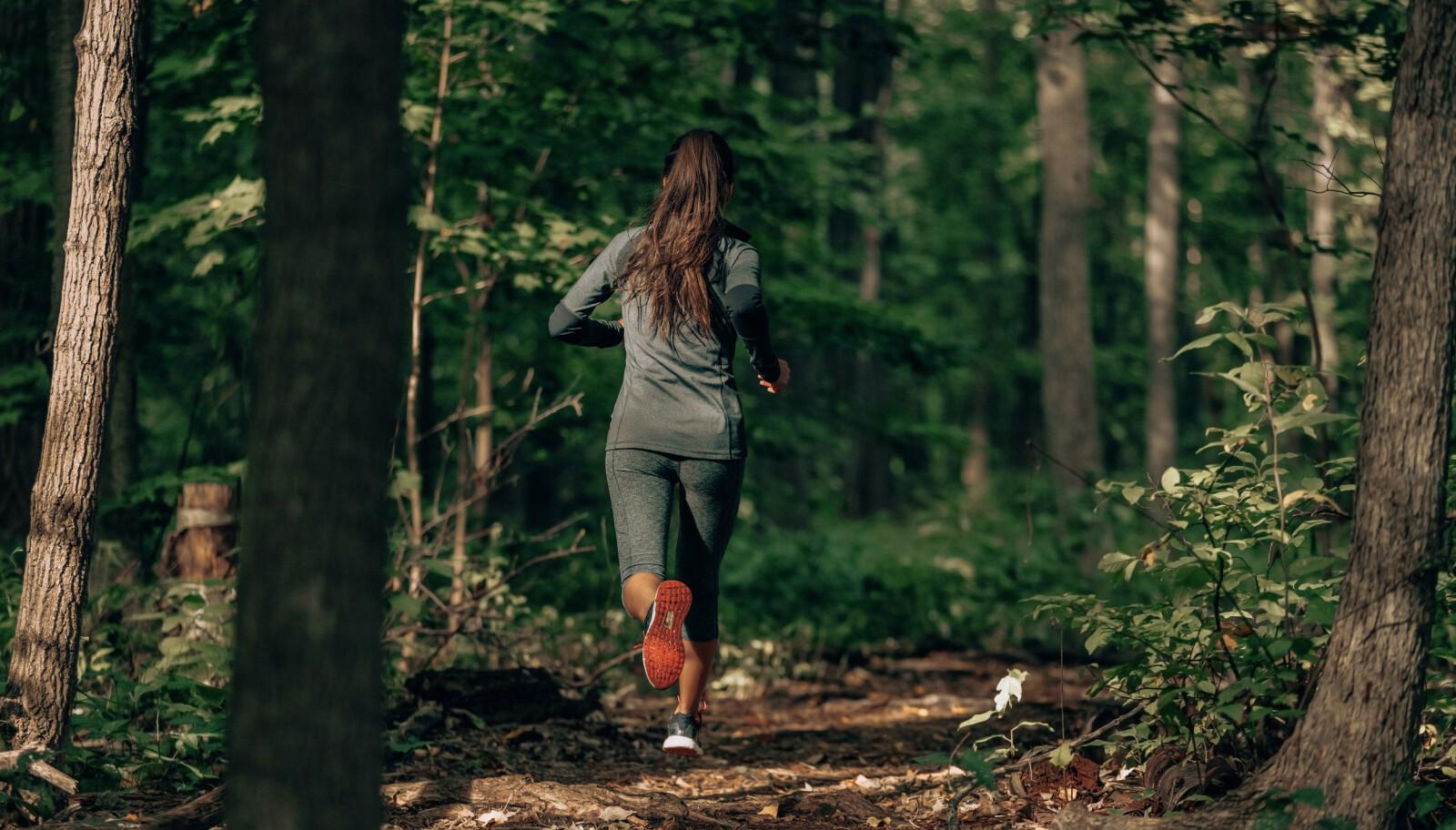 LØPING: Ifølge Per Elias Kalfoss i Norges Skiforbund er det også lurt å legge inn et par løpeøkter i skog og mark, i løpet av våren og sommeren, for å opprettholde kondisjonen til skisesongen. ILLUSTRASJONSFOTO: NTB