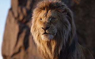 Løvenes Konge 2 på vei
