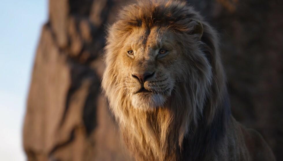 <strong>MER MUFASA:</strong> Og denne gangen er det gamlefars opprinnelseshistorie som er hovedfortellingen. Sier ryktene. Foto: Disney