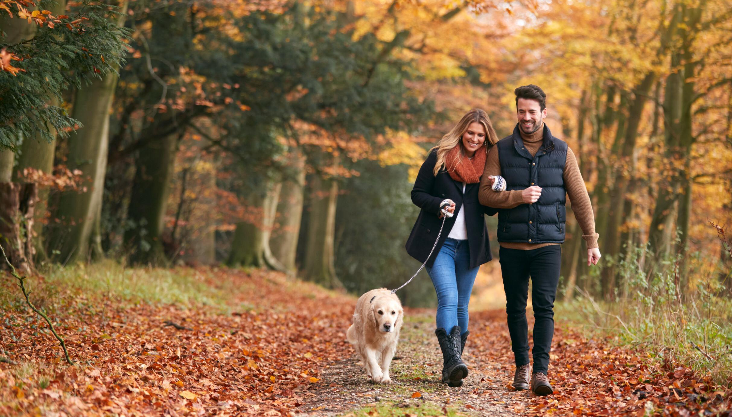 BEDRE EFFEKT: Hvor fort du går, i hvilket terreng og om du går i oppoverbakke, har mye å si for helseeffekten. FOTO: NTB Scanpix