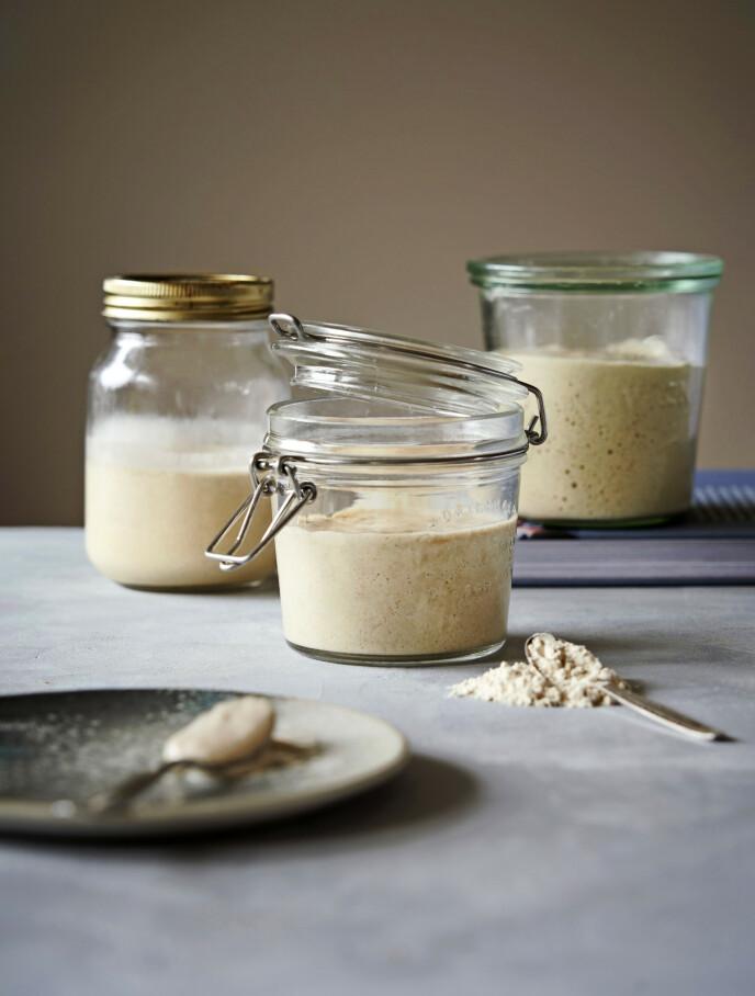 I surdeigen dannes mikroorganismer som omdanner stivelsen imelet til alkohol, CO2 og melkesyrebakterier som får brødet til å heve og smake godt. FOTO: Lea Kaae