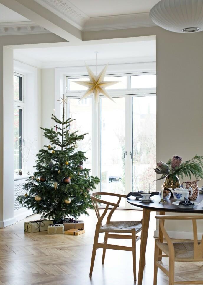 En gjennomført julestil krever at du gir alle detaljer oppmerksomhet. Her er alt, fra pynten på treet til gaveinnpakkingen og den store julestjernen, holdt i de samme nyansene. FOTO: Kira Brandt