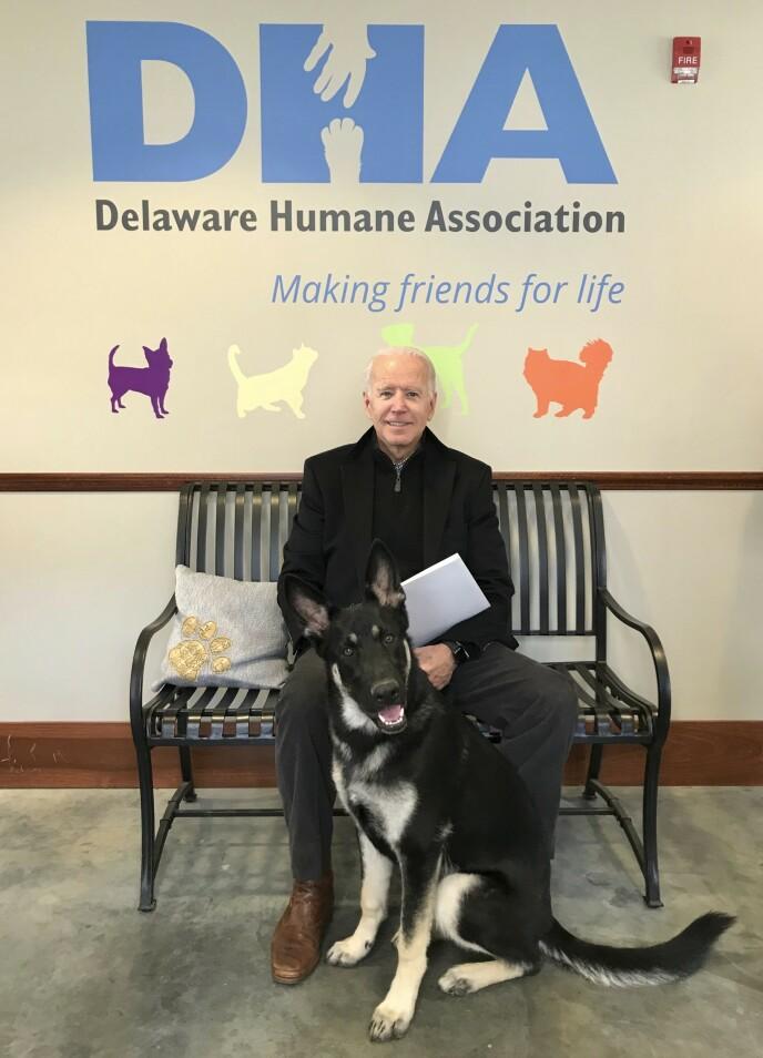Foto: Stephanie Gomez/Delaware Humane Association via AP/NTB