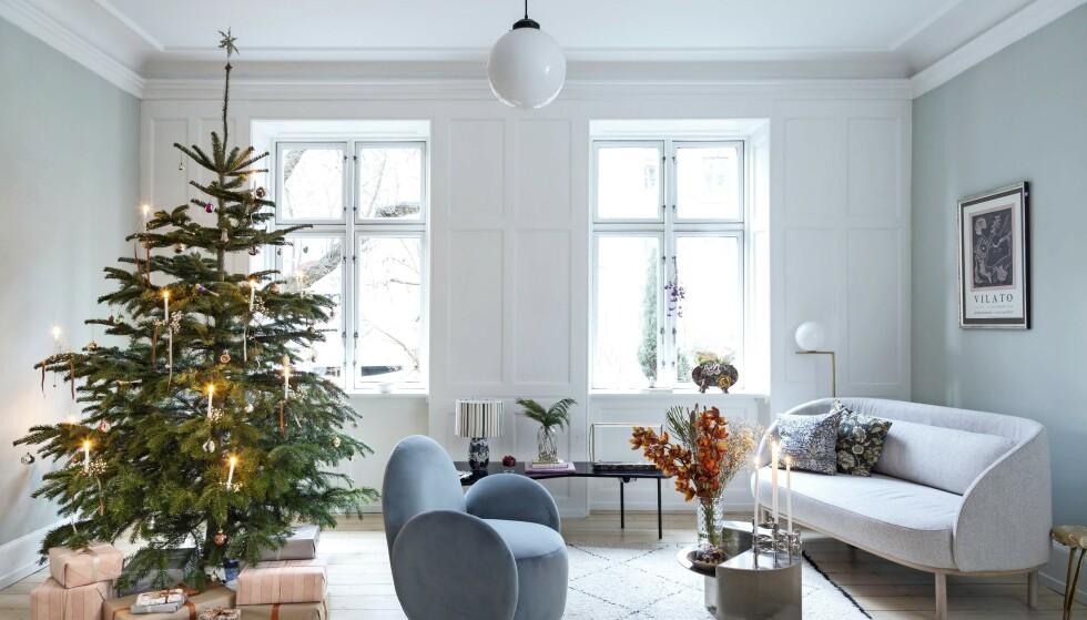 All pynten trenger ikke å plasseres på treet med en gang. Bind i stedet sløyfer, heng enkelte kuler på greinene, og suppler med mer når julaften nærmer seg. Gulvteppet er fra Kirsten Fribert, lenestolen fra Bolia. Tips! En enkel, helt spesiell gjenstand, enten det dreier seg om pynt eller interiøret du har rundt deg hele året, er nok til å prege et helt rom. Som den blå stolen her. FOTO: Anitta Behrendt