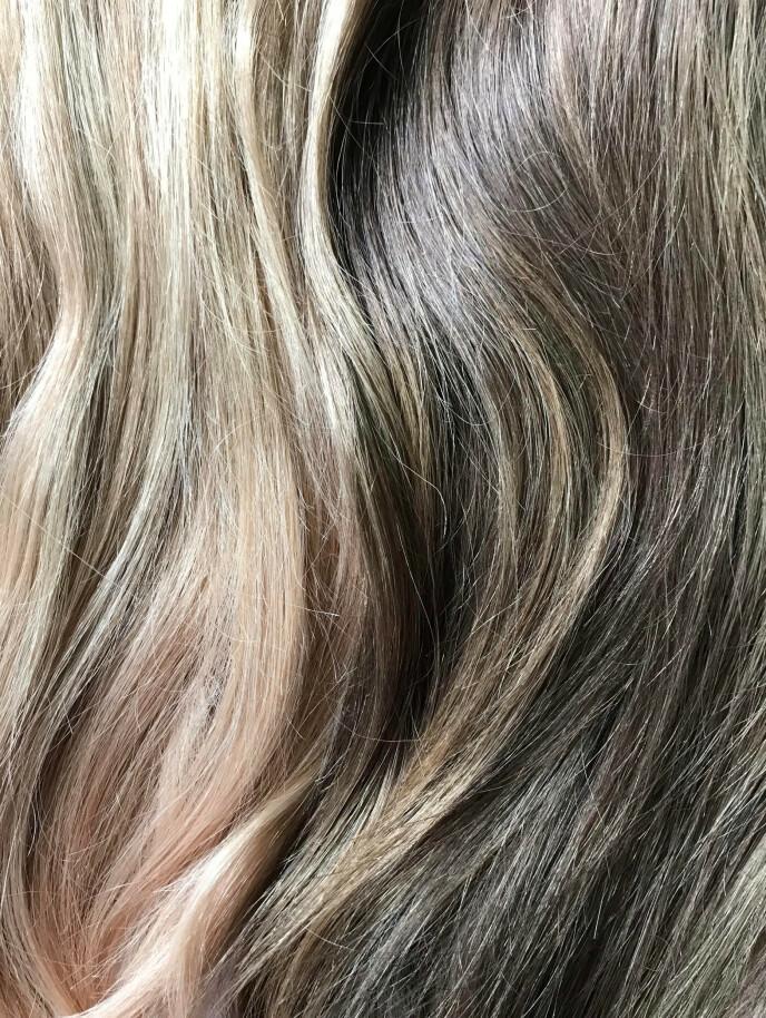 EN GOD BLANDING: Se så fint det er med blondt og brunt hår sammen - eller bronde om du vil. Foto: NTB