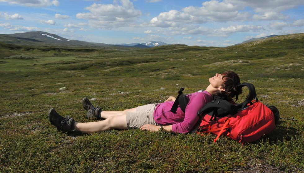 TILPASSET: Inger Karin nyter stillheten og duften av fjellsommer i lyngen. Våren 2016 hadde hun nylig blitt operert for prolaps, og på turen hadde hun mye nervesmerter og må ta hyppige stopp. FOTO: Privat